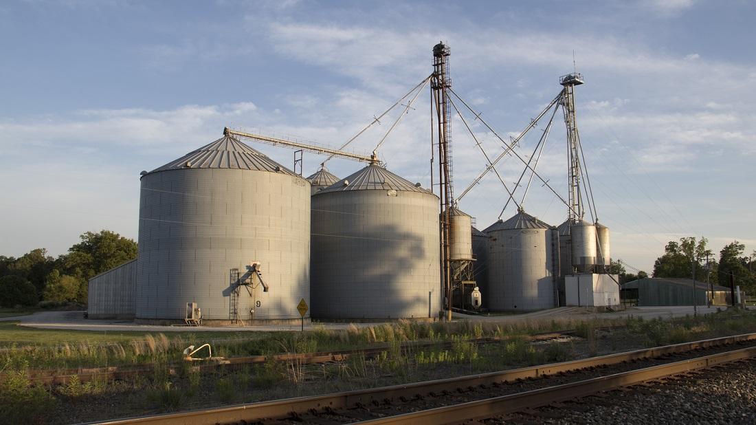 Total Grain Marketing > Home